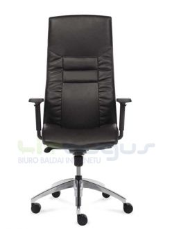 Arco Executive